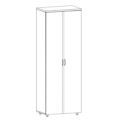 акцент-шкаф-одежда-С51
